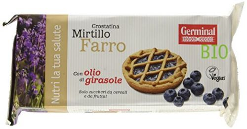 Germinal- Organic blueberry tart